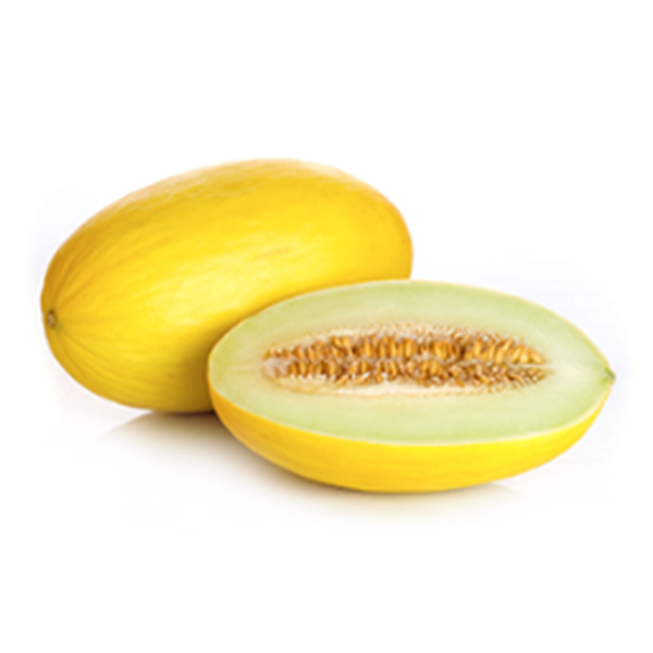 ECO Yellow melon