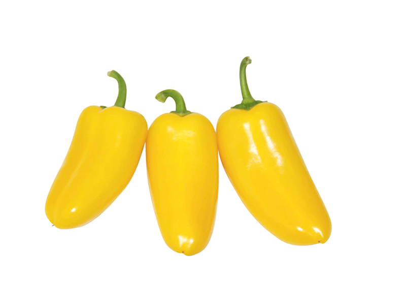 Yellow Tribelli pepper