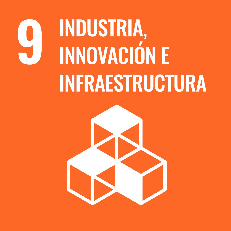 Industria, Innovación e Infraestructuras