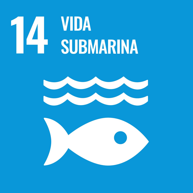 Conservar y utilizar sosteniblemente los océanos, los mares y los recursos marinos