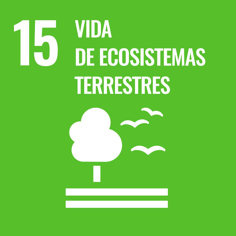 Promover el uso sostenible de los ecosistemas terrestres, luchar contra la desertificación, detener e invertir la degradación de las tierras y frenar la pérdida de la diversidad biológica