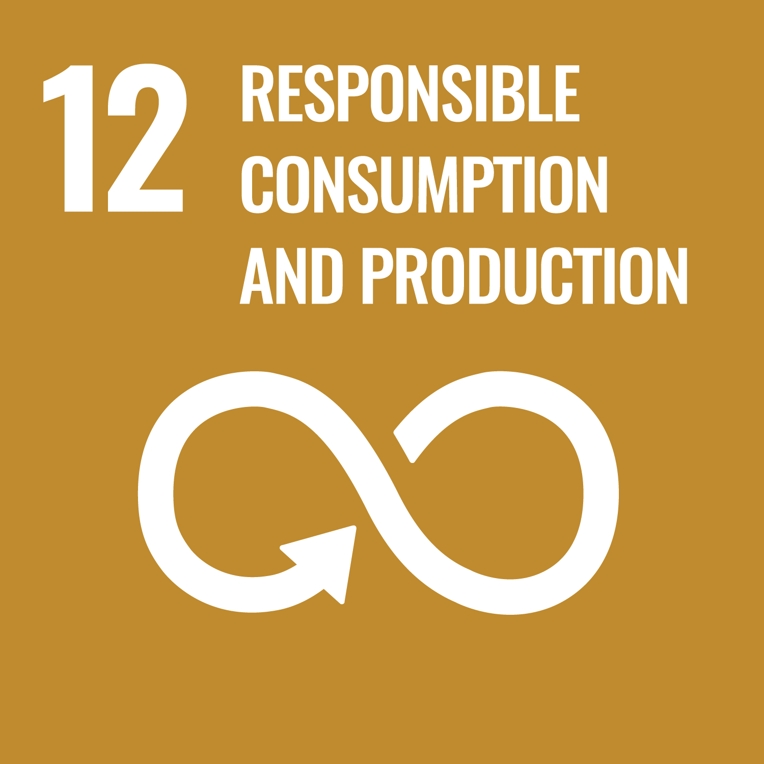 Ensure sustainable consumption and production pattern