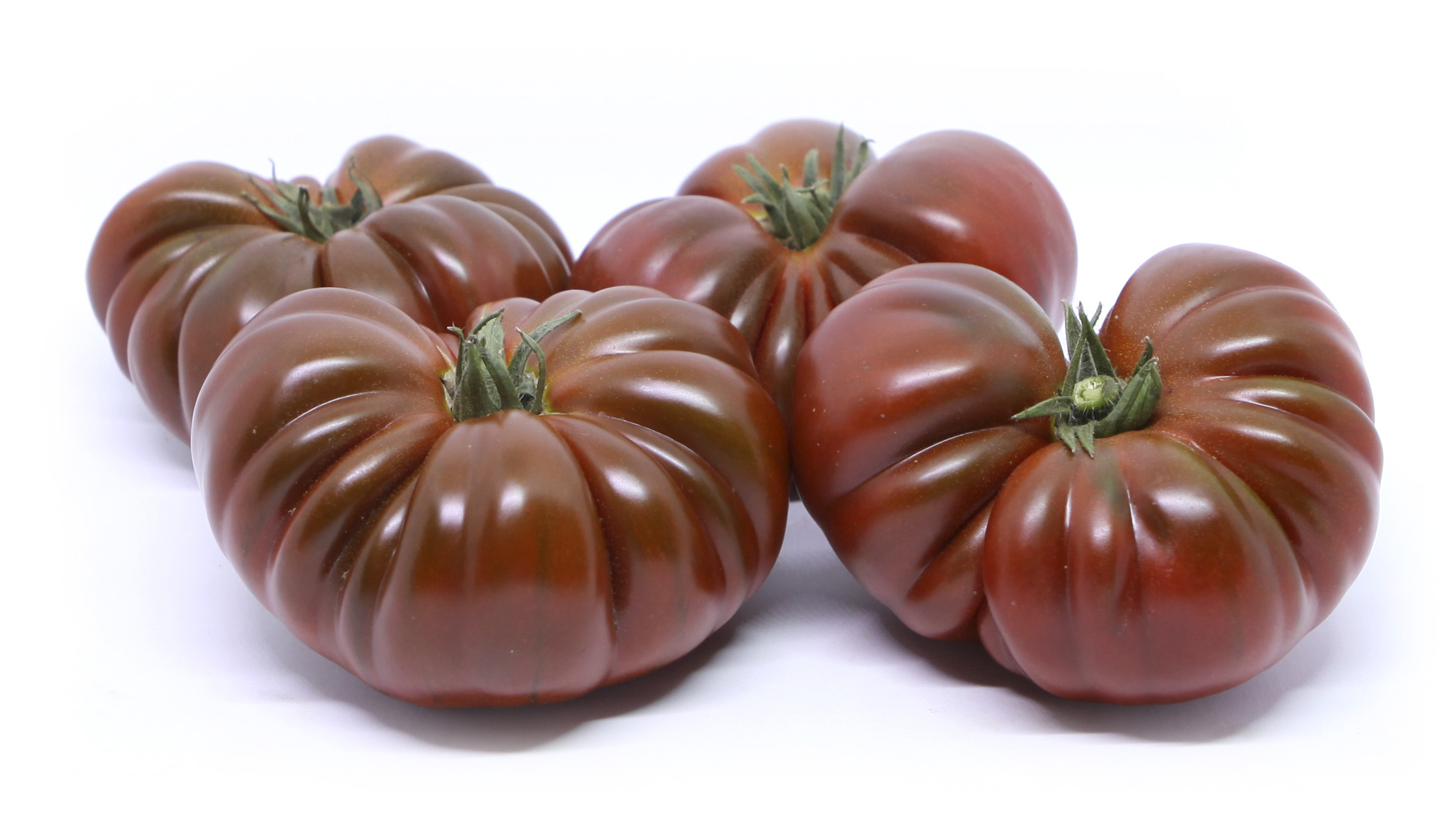 FLOU Tomate Premium Asurcado